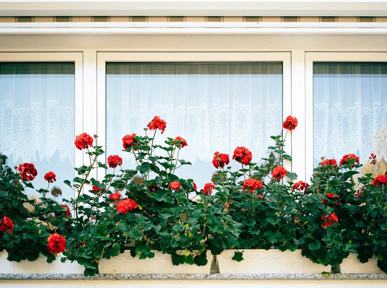 Pourquoi faire poser ses fenêtres par des professionnels ?